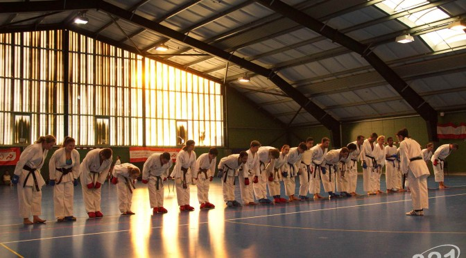 1. Wien-Tag für Karate 2015
