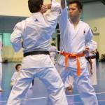 1. Wien-Tag des Karate Landesverbandes