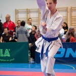 ASKÖ Wiener Karate Landesmeisterschaft 2016 in der Bernoullistraße 9, 1220 Wien