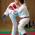 Wiener Karate Landesmeisterschaft 2016 in der in der PAHO-Halle, Jura-Soyfer-Gasse 3, 1100 Wien