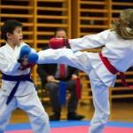 "des ""Shiai Karate Do"" Vereins Wien"