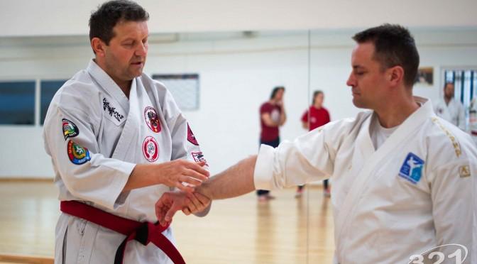 Kyusho Jitsu Seminar in Wien 22