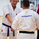 Kyusho Jitsu Seminar in Wien 22 mit Zendoryu und Kyusho GM Manfred Tiefenbach