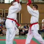 Wiener Karate Landesmeisterschaft 2014