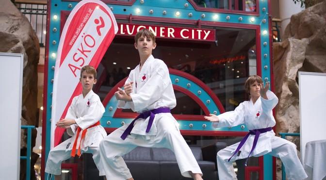 Karate Vorführung in der Lugner City 2014