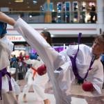 Karate Vorführung in der Lugner City
