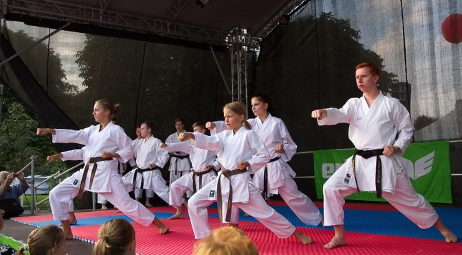 Tag des Sports 2014 – Karate